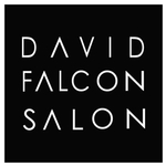 David Falcon Salon