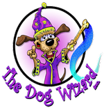 The Jacksonville Dog Wizard