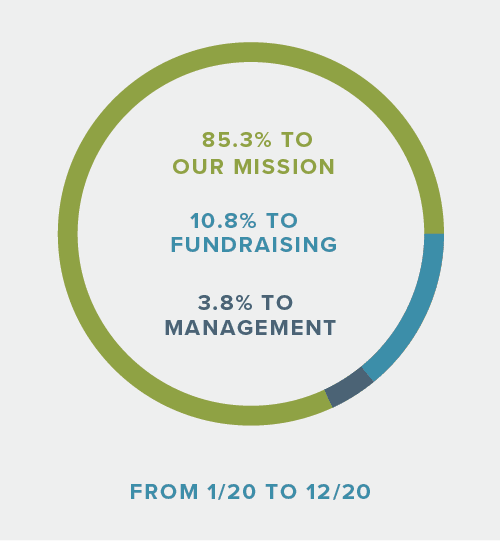 85.3% to mission, 10.8% to fundraising, 3.8% to management from 1/20 to 12/20