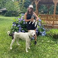 Brianne Belchior profile picture