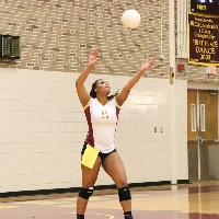 Lady Marauder Volleyball profile picture