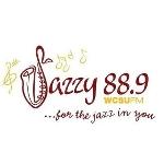88.9 WCSU FM profile picture