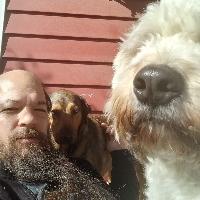 George Jaros profile picture