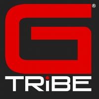 Team GTribe profile picture