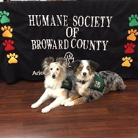 Animal Assisted Therapy Program profile picture