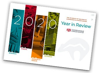2020 Year in Review PDF cover