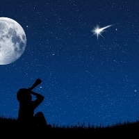 Les étoiles filantes profile picture