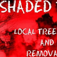 ShadedTree profile picture