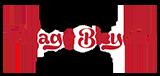 Villiage Bicycles Logo2.png