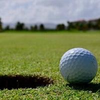 Michigan Golf MS 2021 profile picture