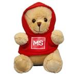 bernard the ms bear