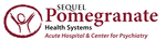 SEQUEL - Pomegranate Health Systems