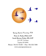 Synergy Systems Consulting, P.A.
