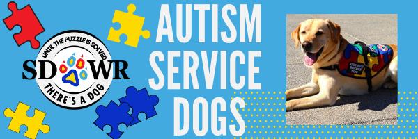 Autism Service Dog