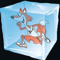 Yorkville CUSD #115 Frozen Foxes profile picture