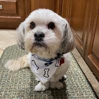 Lorraine Alderette profile picture