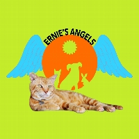 Ernie's Angels profile picture