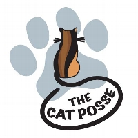 TEAM CAT POSSE profile picture