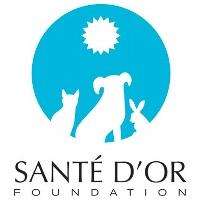 Sante D'Or profile picture